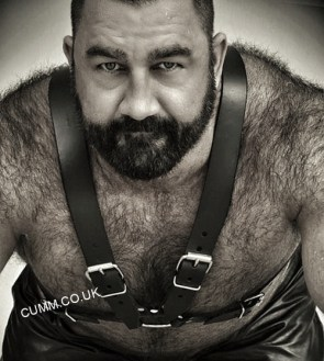 bear-art-leather-daddy-dom-Copy