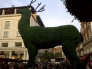 Covent Garden6