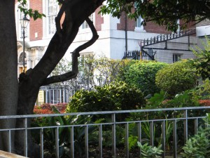 Garden on the site of 20 Queen's Square