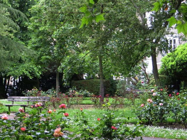 The gardens of Lonsdale Square, Summer