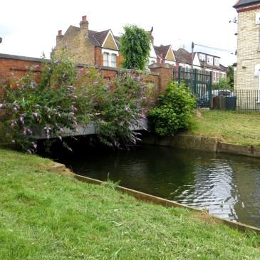 New River Walk (No.5)