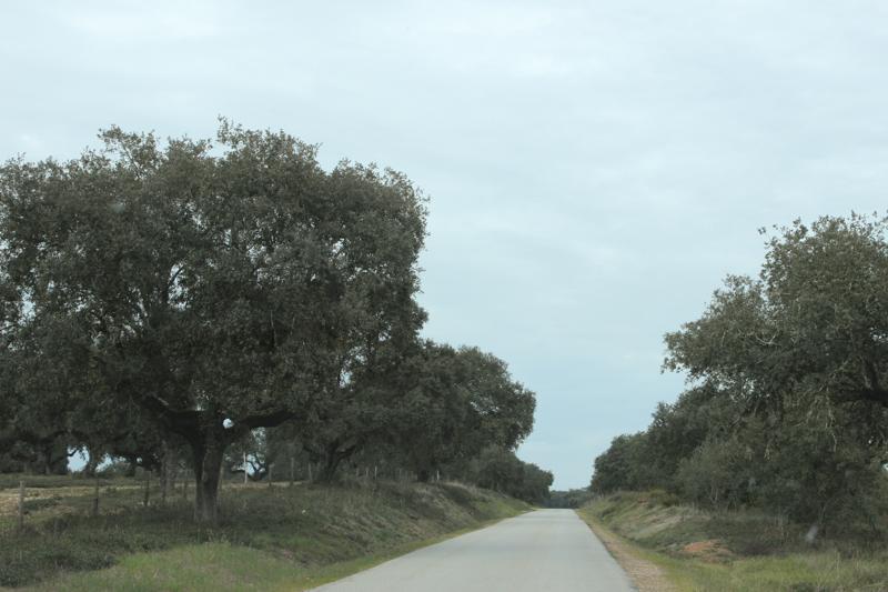 15-2 Portugal Day 1 HR-159
