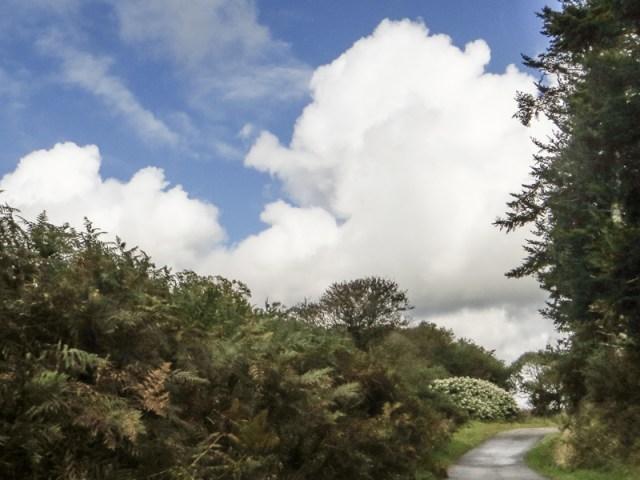 Downhill to Locqueffret