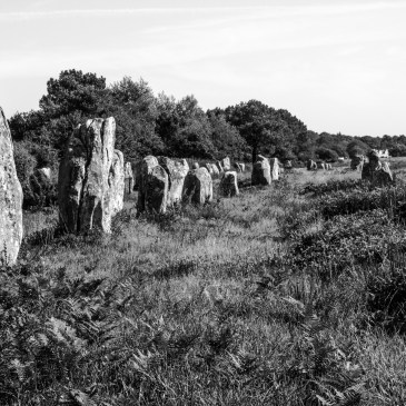 Le Menec, Carnac, black & white photography