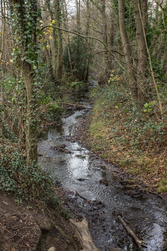 The Ravensbourne in Scrogginhall Wood