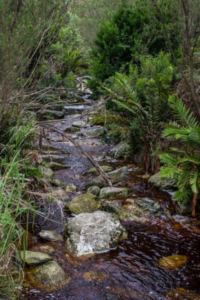 The stream from the Duilwelsbos Waterfall