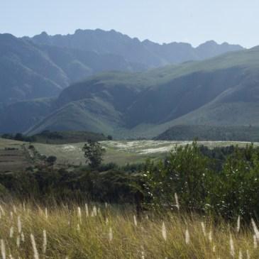 Swellendam to Stellenbosch