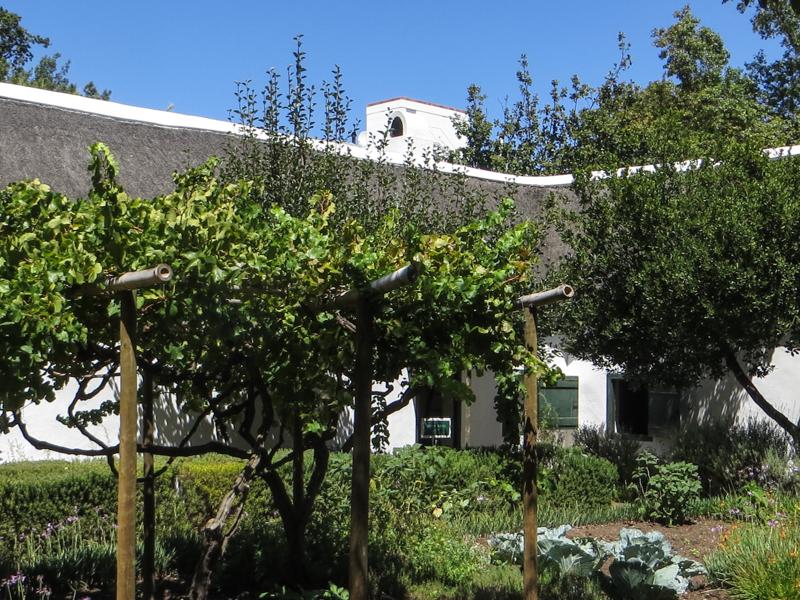 The Schreuderhuis, Stellenbosch, and its fruit & vegetable garden