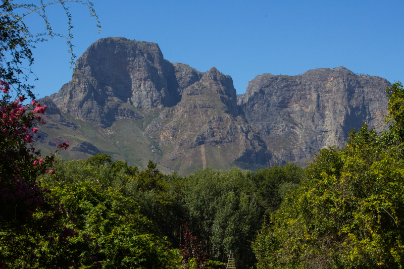 The Groot Drakenstein Mountains above Boschendal
