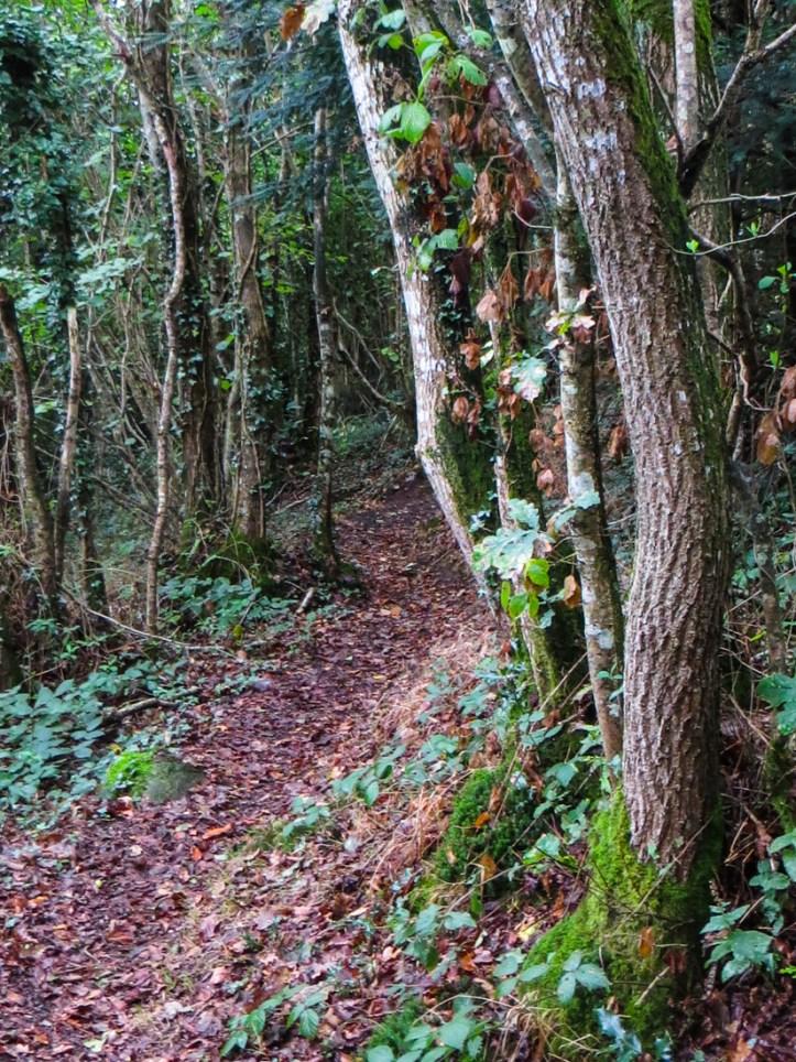 La Vallee Perdue, walk