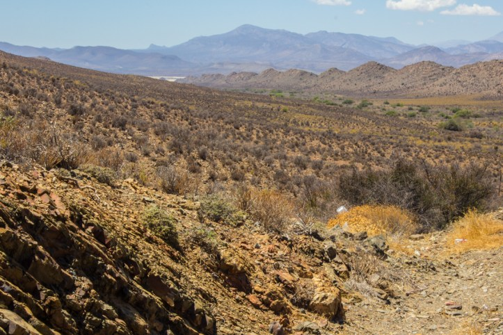Looking towards the Swartberg Mountains from R323