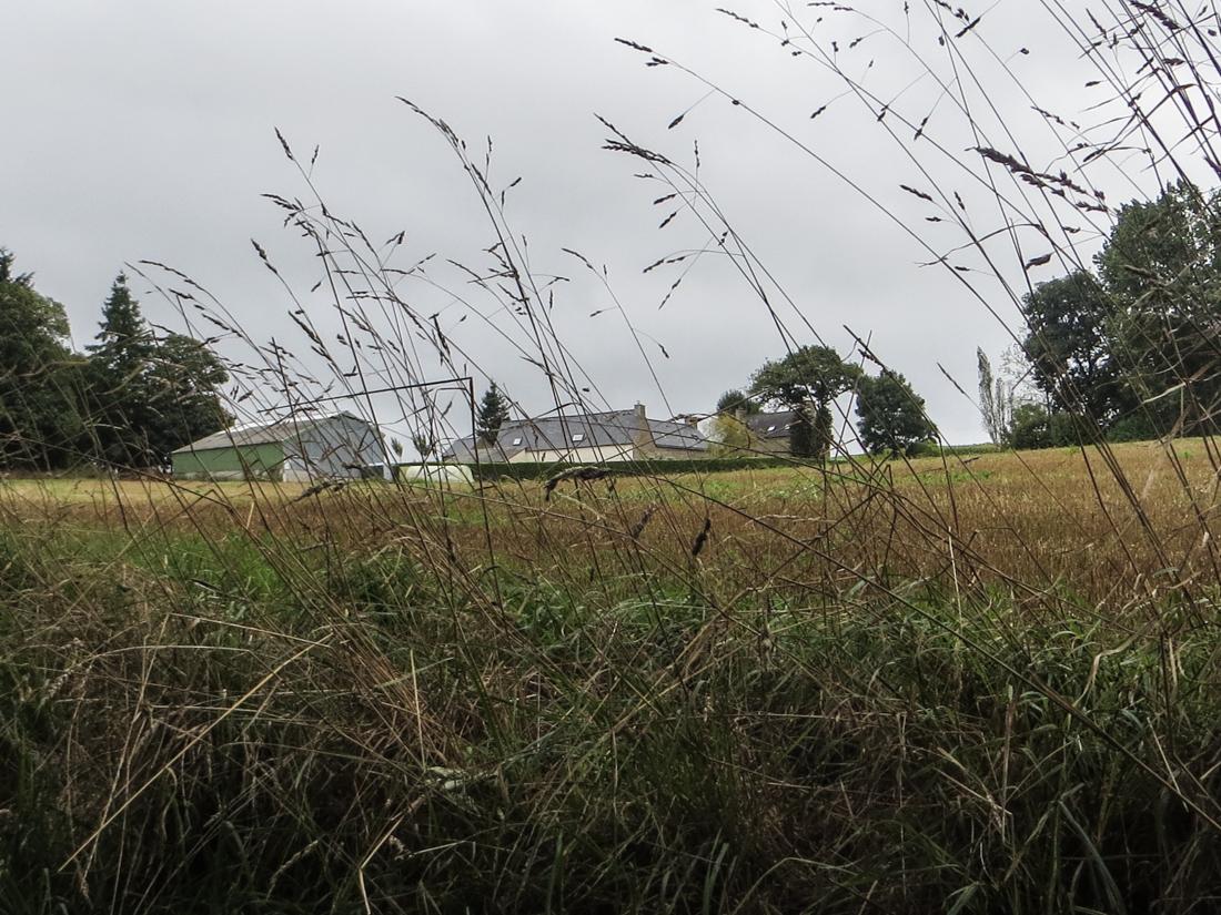 Approaching Tredaniel