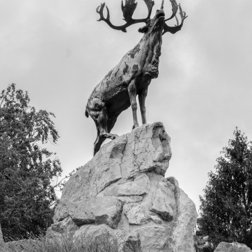Beaumont-Hamel & Thiepval