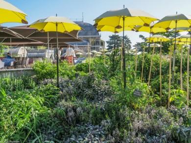 Botanical Gardens, Nantes