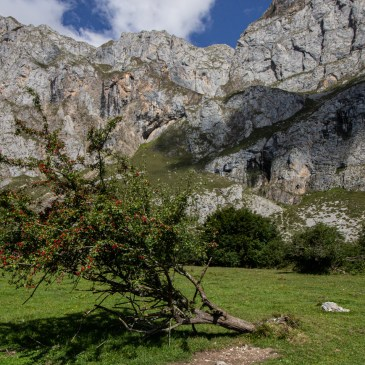 Fuente De in the Picos de Europa Mountains