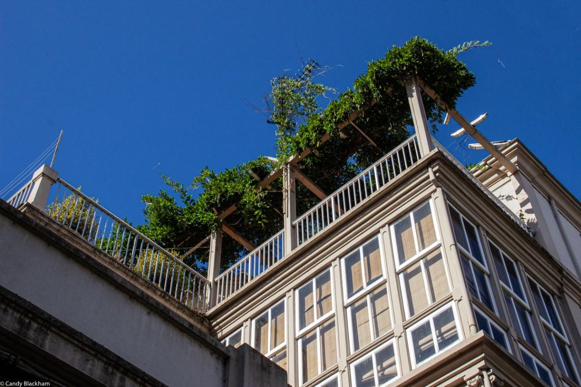 Green space in Monforte de Lemos