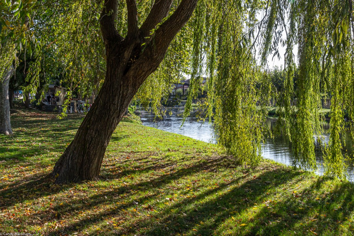 Parks in Monforte de Lemos