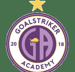 Goalstriker Academy