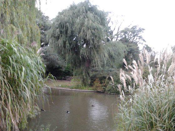 regents park image 006
