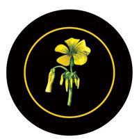 Sour Sob Battle of Bosworth Logo