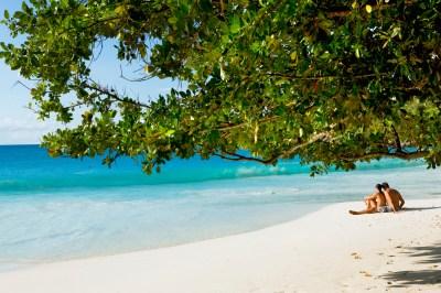 Anse Lazio | Praslin, Seychelles Praslin - Lonely Planet