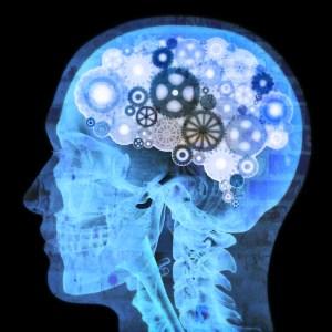 brain-working-2ndskiesforex