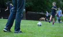 Father and son kick soccer ball, whilst both participating in the disco.