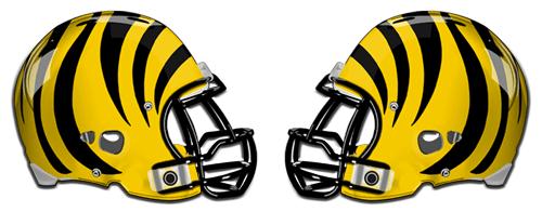 Snyder Tigers - Texas high school football
