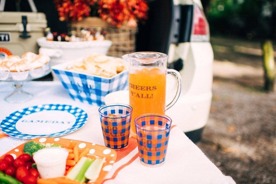 Draper James Cheers Y'all Tailgate Tumbler Set