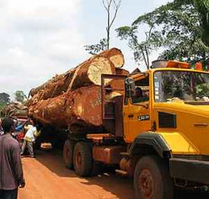 A logging truck collides with a bush taxi