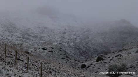 The path up the west side of Crowden Clough is easier to follow and its clear to see as we climb into the cloud