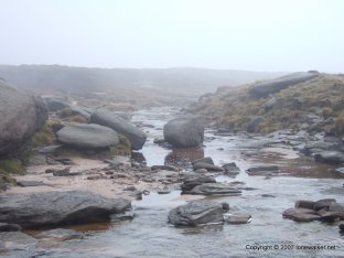 Kinder Downfall 035