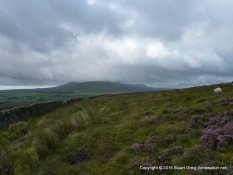 Along the Dales Way, looking at Ingleborough