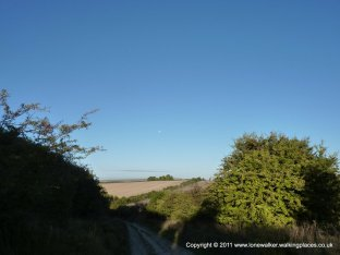 "Looking back down the first ""hill"" of the day - moon in the sky"