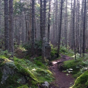 Appalachian Trail S101E128