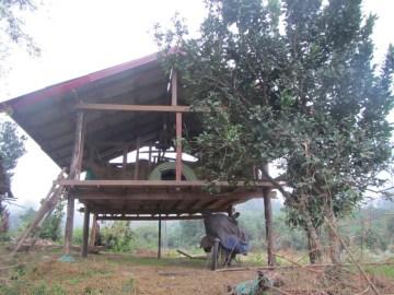 laos-barn