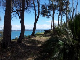 View of Batemans Bay from Cliff top