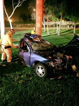 fatal-car-crash-into-tree