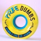 Dumb-Front