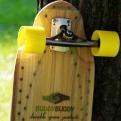 Buddy Buddy ST in the sun