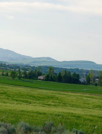 View across a field with the view of mountains in the background.