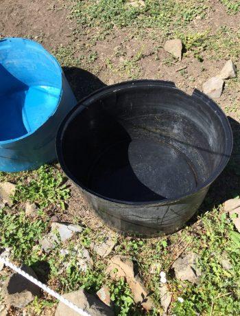 Clean water troughs.