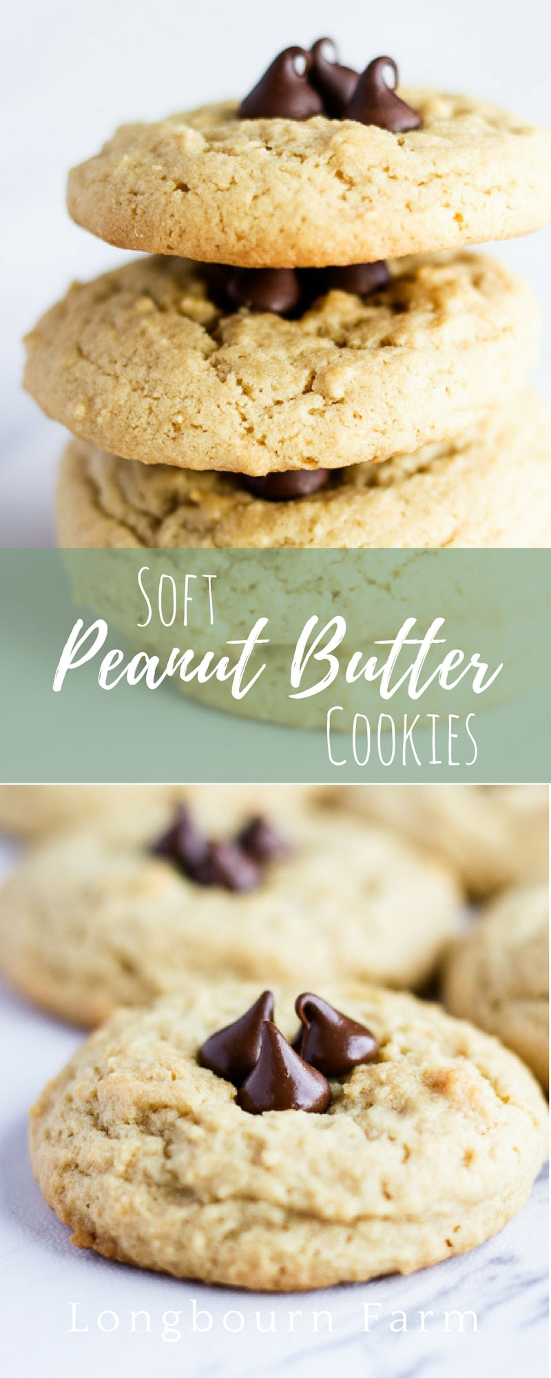 These soft peanut butter cookies are easy to make, soft, and delicious!! Every bite packed with peanut butter flavor, topped with chocolate chips to make them extra special.