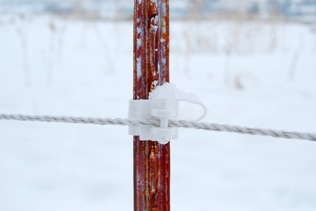 t-post electric fence insulator