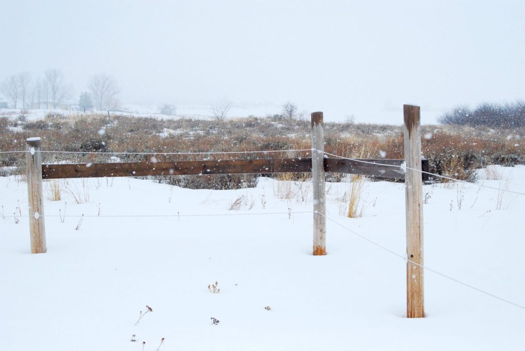 Electric fence setup cost review