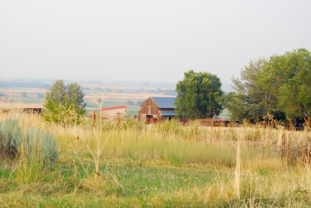 Herbicides on the Farm