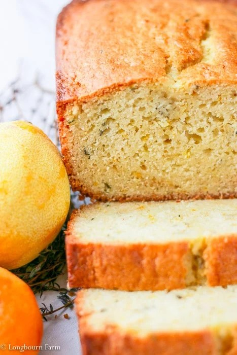 Front view of sliced citrus thyme bread.