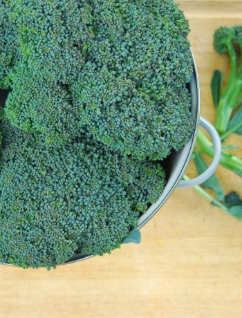 How to Harvest and Freeze Broccoli