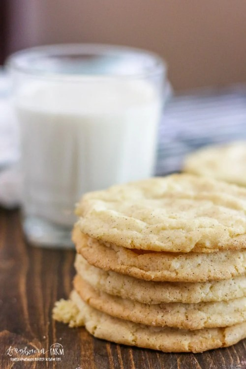 A stack of snickerdoodle cookies.