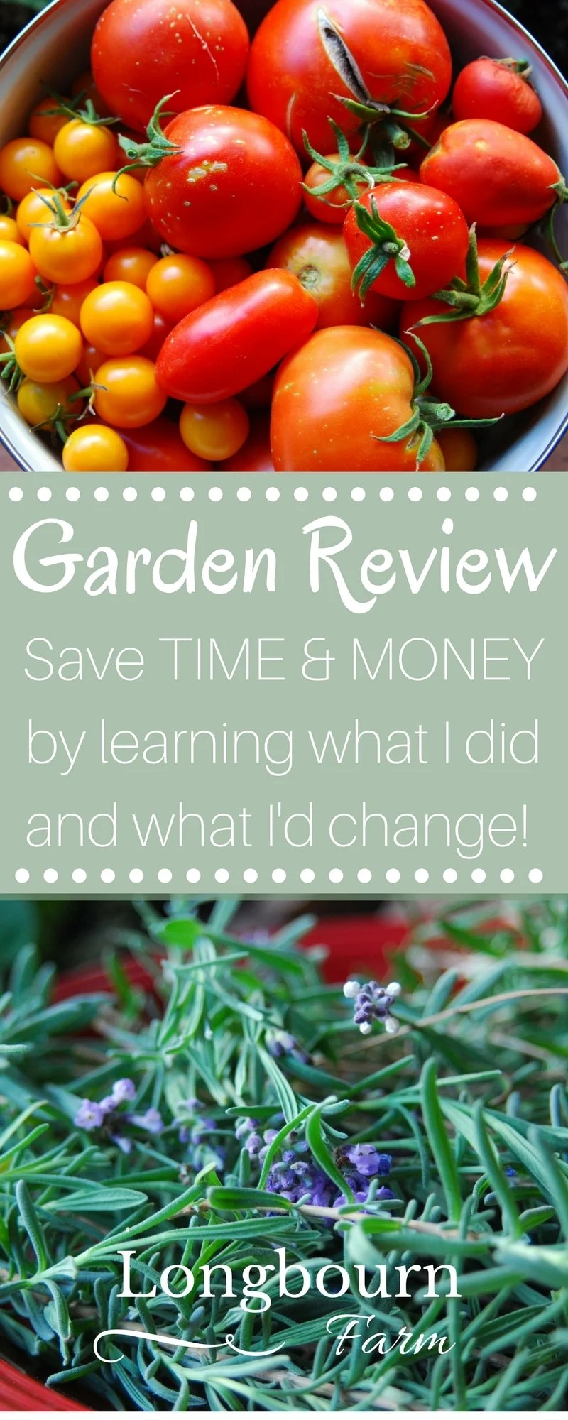 Read how my garden went this year! It will help you make your own garden improvements, save time in your garden and save money in your garden!